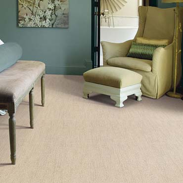 Caress Carpet by Shaw | Clarksville, TN