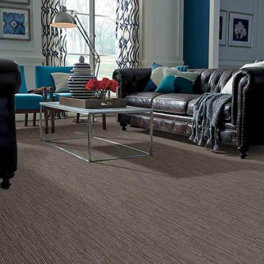 Anso® Nylon Carpet in Clarksville, TN